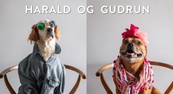 THUMBNAIL Harald og Gudrun vil til Spania